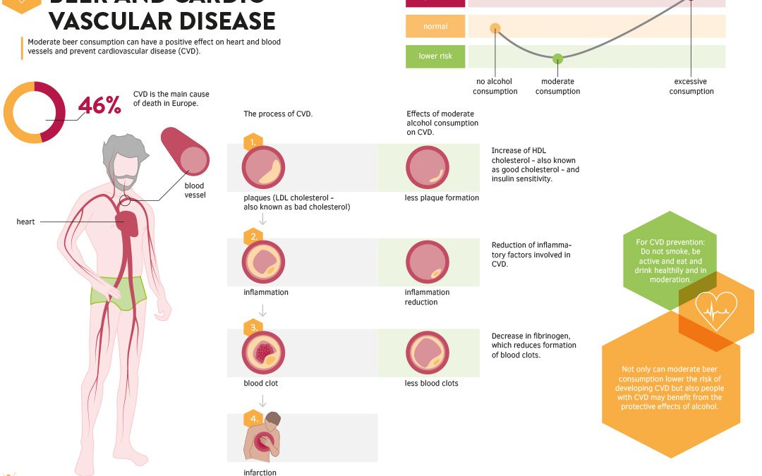Infographic: Beer and Cardiovascular Disease