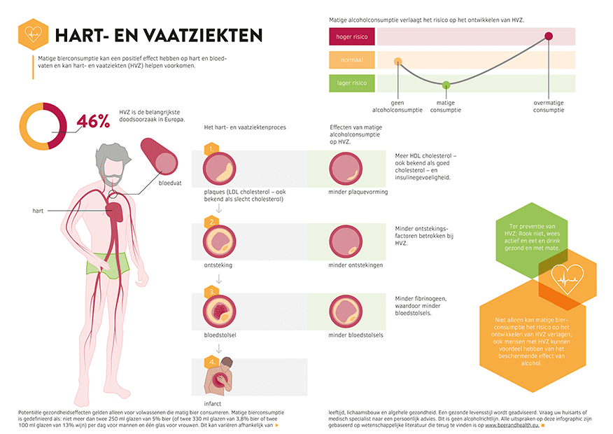Infographic Hart- en vaatziekten