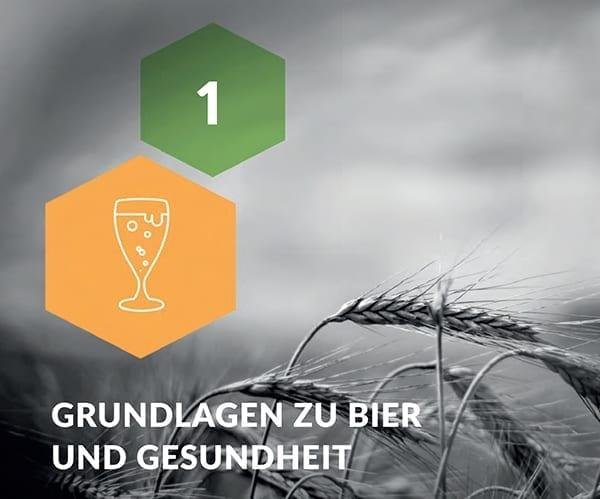 Grundlagen Zu Bier Und Gesundheit